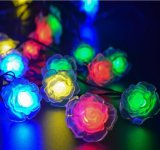 Indicatore luminoso Rosa della stringa di energia solare 20-LED per l'Nuovo-Anno Lh-Ss24 di cerimonia nuziale di natale