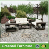 Rota al aire libre/muebles de mimbre del jardín del sofá