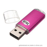 Gestionnaires faits sur commande en gros du logo USB 2.0 pour le cadeau