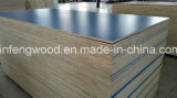 ISO9001 Certificate Full Poplar Core Plywood con HPL (1220*2440)
