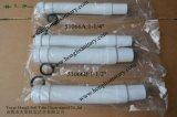 Boyau flexible de prolonge de 51066 Watertec Malaisie avec l'extrémité de cône