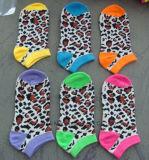 Cotton Socks chaud populaire de vente de Madame Low Cut aucune exposition ne cogne les chaussettes bon marché des prix