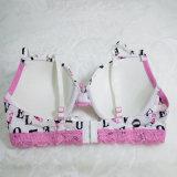 Het modieuze Hete Ondergoed Nieuwe Sexy Swimwear van de Vrouwen van het Strand