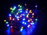 Lumière décorative bleue de chaîne de caractères de DEL pour le jardin et la décoration de Noël