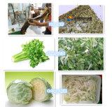 Автомат для резки резца повилики шпината/капусты/воды, салат/резальная машина тяпки овоща листьев