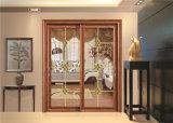 Алюминиевая стеклянная раздвижная дверь 2801