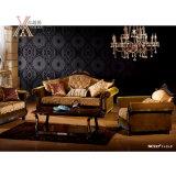 Il sofà del tessuto ha impostato (NCS27)