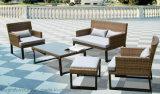 Mobília ao ar livre de vime das cadeiras do jogo e do lazer do sofá do Rattan plástico moderno europeu ajustada (F866)