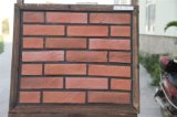 Mattone artificiale delle mattonelle della parete di pietra della coltura, pietra Manufactured (YLD-18037)