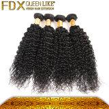 Afro выдвижений волос Remy туго человеческие волосы курчавых бразильских искусственние