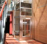 기계 Roomless 300kg 0.4m/S (DPH35)를 가진 가정 상승