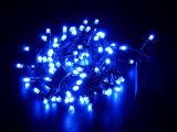 Het blauwe Decoratieve LEIDENE Licht van het Koord voor Tuin en de Decoratie van Kerstmis