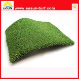 عادية - كثافة سجادة بلاستيكيّة عشب اصطناعيّة لأنّ لعبة غولف