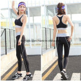 Le donne asciugano rapidamente l'usura atletica del vestito di usura di ginnastica dei pantaloni di yoga