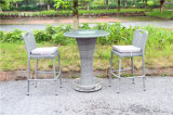 Giardino esterno Bar Chair e Table