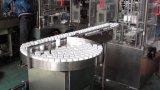 Empaquetadora automática del cartón para la botella (JDZ-100P)