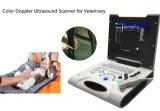 Sistema veterinário Ew-C8V do ultra-som de Doppler da cor com ponta de prova linear para as peças pequenas, vascular, osteomusculares
