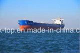 Trasporto poco costoso del mare di FCL/LCL dalla Cina ad universalmente