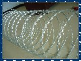 Высокий PVC Coated Razor Barbed Iron Wire Tensile Galvanized для Security Китая Alibaba Manufacture