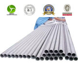 SUS TP Sts 309S 310S 904L Super Austenitic Stainless Steel Pipe
