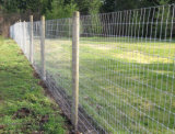 結ばれた金網の家畜および農場の塀