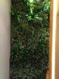 녹색 벽 구 Wall1023155910의 고품질 인공적인 플랜트 그리고 꽃