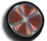 XLPE aisló el cable de transmisión de alto voltaje forrado PVC 0.6/1kv No-Acorazado
