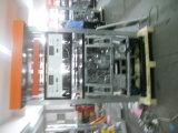 De Automaat van de Brandstof van de Automaat van de Brandstof van vier Pijpen rechts-W244