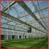De Serre van het Blad van het Polycarbonaat van de multi-Spanwijdte van de Landbouw van China voor Groenten