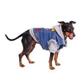 Rivestimento su ordinazione del cane di animale domestico nelle parole