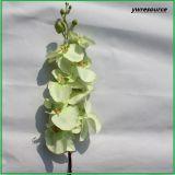 Lifelike Silk орхидея искусственних цветков поддельный для украшения дома венчания