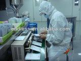 Cápsulas da moringa oleifera do pó da folha da venda por atacado do certificado do PBF