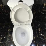 Boa qualidade Fácil de limpar um banheiro de porcelana de uma peça