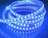 옥외 SMD5050 120LED/M 높은 볼트 LED 지구