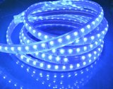 Im Freien SMD5050 120LED/M hohe Streifen des Volt-LED