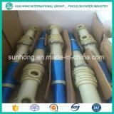 Sunhongの装置をリサイクルする紙くずのための高い整合性のパルプの洗剤