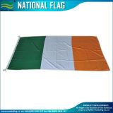 アイルランドのフラグの緑の白いオレンジ(B-NF05F09026)