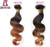 L'armure péruvienne d'extensions de cheveux humains de Remy d'onde de corps de cheveu d'Ombre empaquette le volume de cheveu de deux sons