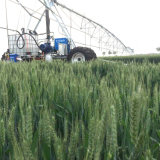 Боковая оросительная система фермы движения от изготовлений полива спринклера