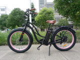 bici eléctrica del neumático 500W de la playa eléctrica gorda de la bicicleta para la señora