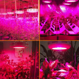 As luzes internas para planta redonda Growing do diodo emissor de luz do UFO das plantas 50W crescem a luz