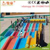 Diapositiva del arco iris de la diapositiva de agua de la fibra de vidrio para la venta
