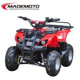 Het hete Verkopen Ce Goedgekeurde 48V 800W Elektrische ATV