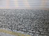 De grijze Plak van het Graniet van het Graniet G439 Grijze