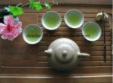 Tè verde di tempo di molla
