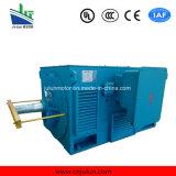 Motor de alta tensão da série Y, motor de indução de alta tensão Y3556-2-400kw
