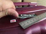 Профессиональное обслуживание качественного контрола и осмотра в Кита-Перемещает багаж