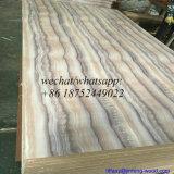 La couleur de marbre de mélamine s'est posée à des forces de défense principale