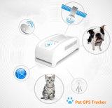Inseguitore in tempo reale di GPS dell'animale domestico dell'indicatore di posizione globale per inseguimento del collare di GPS del cane/gatto di animale domestico