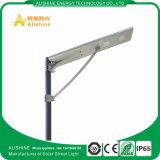 уличный свет высокого качества батареи 30W LiFePO4 солнечный